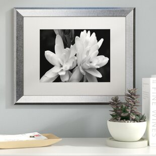 R Rose In Black And White Framed Photographic Print