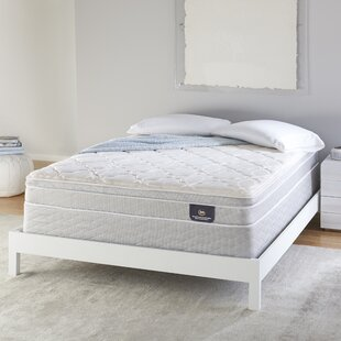 Serta 8 inch  Plush Innerspring Mattress and Box Spring
