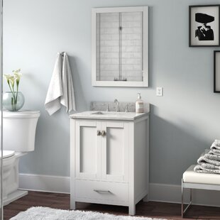 Shopping for Serigne 24 Single Bathroom Vanity Set with Mirror By Willa Arlo Interiors