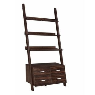 Mccardle Home and Office Ladder Bookcase