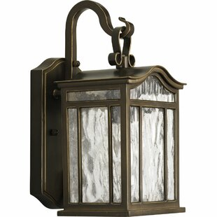 Triplehorn 1-Light Wall European Lantern