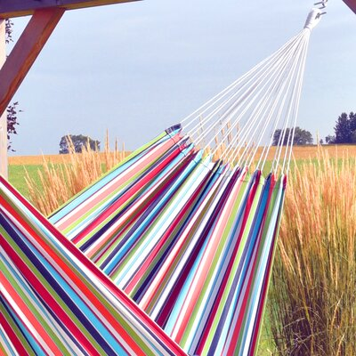 Scrivener Double Classic Hammock by Ebern Designs Looking for