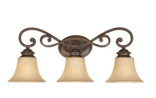 Designers Fountain Mendocino 3-Light Vanity Light