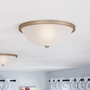 Rayfield 2-Light Flush Mount