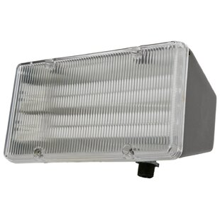 Coleman Cable 2-Light Flood Light