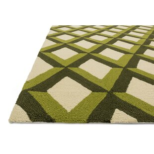 Danko Hand-Hooked Green/Ivory Indoor/Outdoor Area Rug