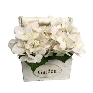 White Hydrangea Arrangement Wayfair