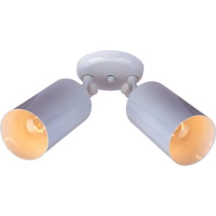 Best Reviews Schanya 2-Light Outdoor Sconce By Orren Ellis