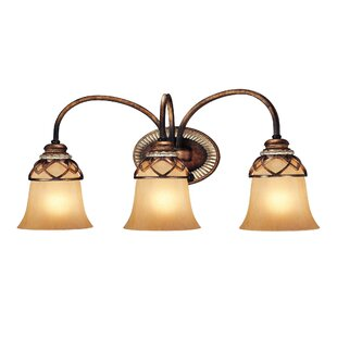 Minka Lavery Aston Court 3-Light Vanity Light
