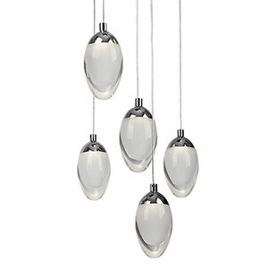 Drop 5-Light Pendant by Radionic Hi Tech