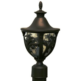 Alcott Hill Phillipstown 1 Light Post Lantern
