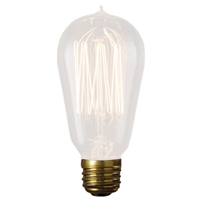 Birch Lane™ Heritage 60 Watt Incandescent, Non-Dimmable Light Bulb, E26/Medium (Standard) Base (Set of 4)