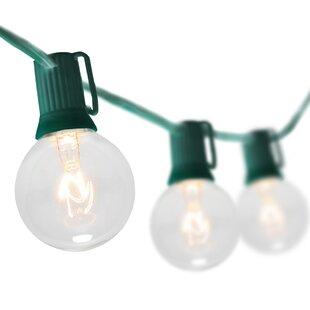 15 ft. 16-Light Globe String Light by Wintergreen Lighting