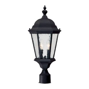 Savings Brook Lane Outdoor 2-Light Lantern Head By Darby Home Co