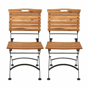 Garden State Folding Garden Chair (Set Of 2) By Butlers