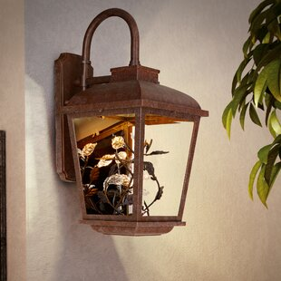 Comparison Savane 1-Light Outdoor Wall Lantern By August Grove