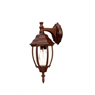Great choice Drumkeeran 1-Light Outdoor Wall Lantern By Astoria Grand