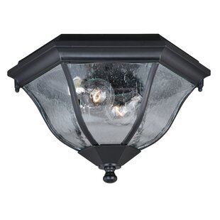Carnanreagh 2-Light Outdoor Flush Mount by Astoria Grand Reviews
