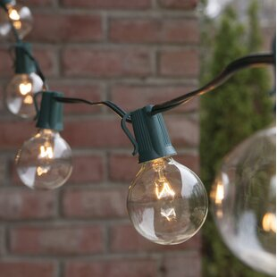 50 ft. 50-Light Globe String Light by Wintergreen Lighting