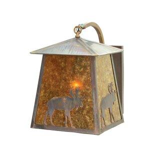 1-Light Outdoor Wall Lantern by Meyda Tiffany