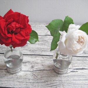 Diy Vase Aus Alten Gluhbirnen Wayfair De