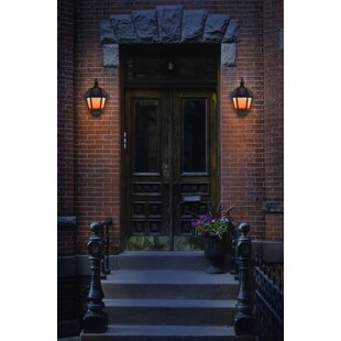 Buy clear Parkin 1-Light LED Outdoor Wall Lantern (Set of 2) By Charlton Home