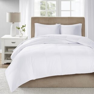 Down Comforter By Alwyn Home