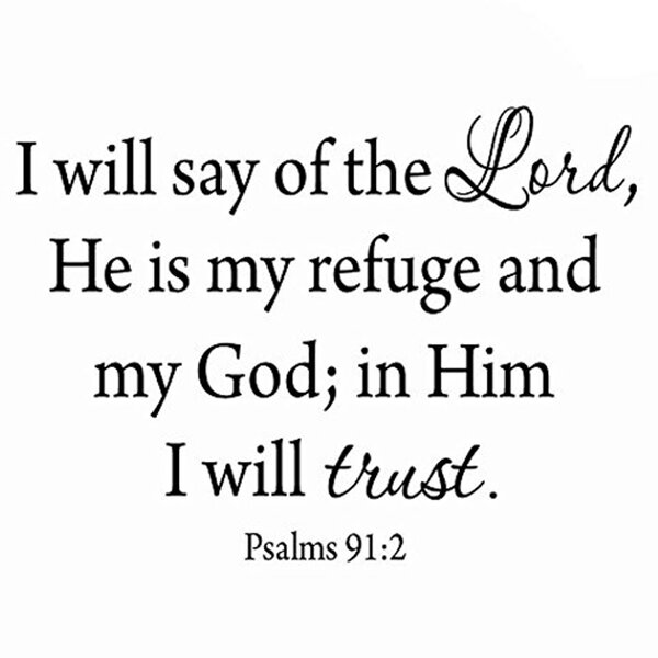 Psalm 91 4 He Will Cover You With His Feathers Bible Verse Wall Decal Scripture Wall Decal Bedroom Living Room Family Wall Vinyl Art Q222 Amazon Com