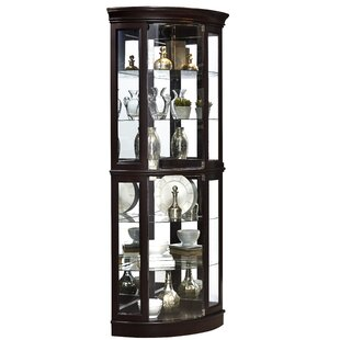 Blakeway Lighted Corner Curio Cabinet by Darby Home Co