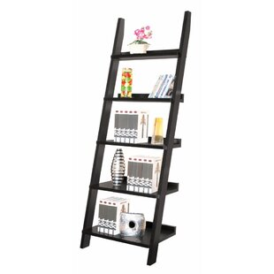 Chunn Ladder Bookcase by Ivy Bronx