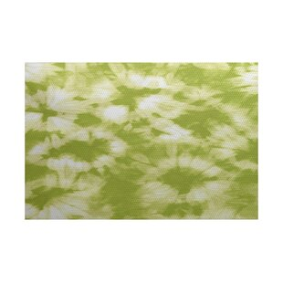 Pembrook Light Green Indoor/Outdoor Area Rug