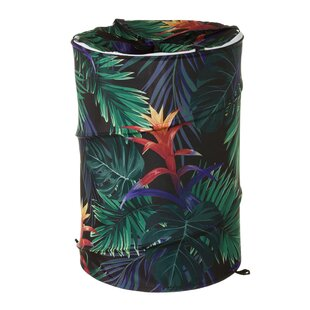Robstown Laundry Bin By Bay Isle Home