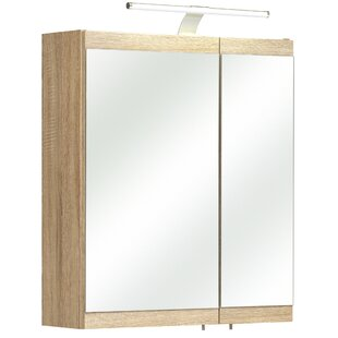 Luanda 60 X 70cm Wall Mounted Cabinet By Quickset