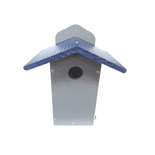 Birds Choice Solutions Recycled 12 in x 9 in x 7 in Bluebird House