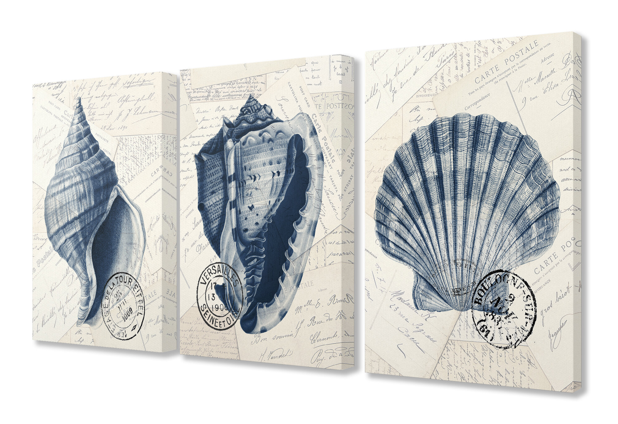Highland Dunes Vintage Blue Indigo Shells On Aged Letters And Paper Trio By Kimberly Allen 3 Piece Graphic Art Set Wayfair