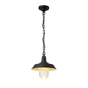 Living District 1-Light LED Outdoor Pendant