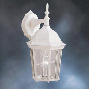 Astoria Grand Allmon 1-Light Outdoor Aluminium Wall Lantern