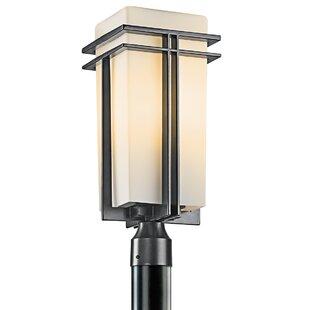 Affordable Modena 1-Light Lantern Head By Latitude Run