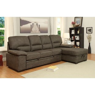 Lynchburg Sleeper Sectional by Darby Home Co
