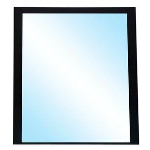 Latitude Run Emory Accent Mirror