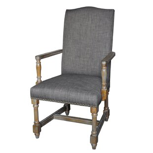 Buying Palaiseur Armchair by One Allium Way Reviews (2019) & Buyer's Guide