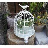 Decorative Bird Houses Cages Wayfair Ca