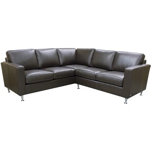Erika Leather Sectional By Coja