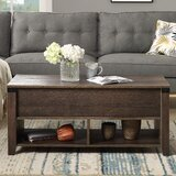 Ilkeston Lift Top Coffee Table with Storage by Red Barrel Studio®