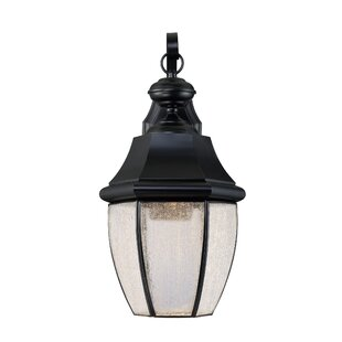 Saddler 1-Light Outdoor Wall Lantern
