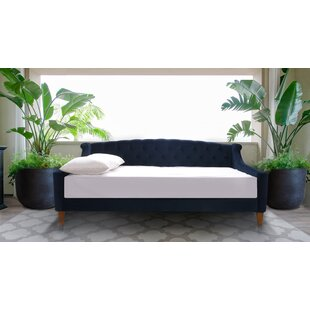 Maeve Daybed by Rosdorf Park