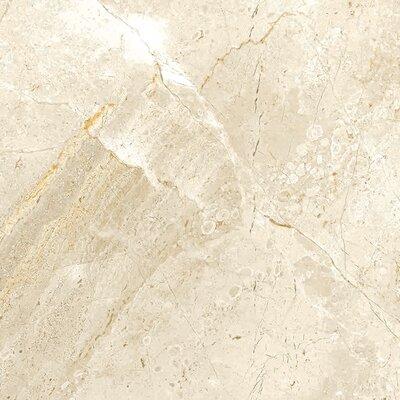 Peyton 12 W X Porcelain Field Tile In Off White