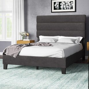 Trappe Queen Upholstered Panel Bed