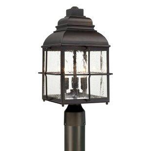 Orrin 3-Light Lantern Head by Loon Peak