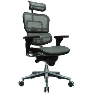 Eurotech Seating Ergohuman Mesh Desk Chair